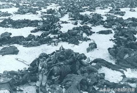 如果没有严寒的冬天,二战苏联能否打赢纳粹德