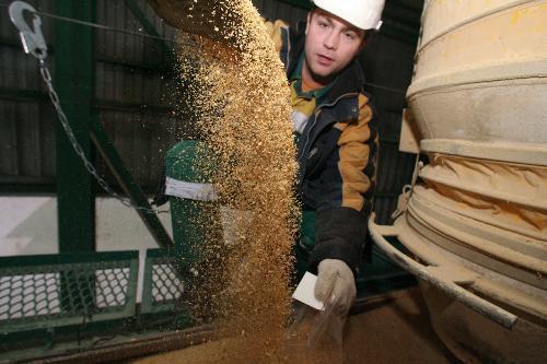 关于向中国出口大豆,俄罗斯释放新信息