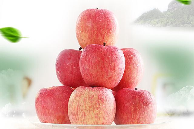 甘肃苹果批发商