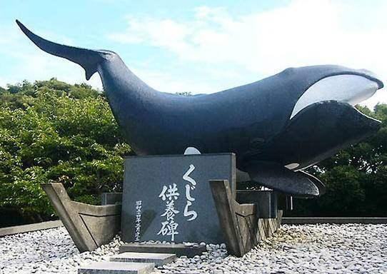 日本人不吃鲸鱼?日本:中国除了桌子以外还有什