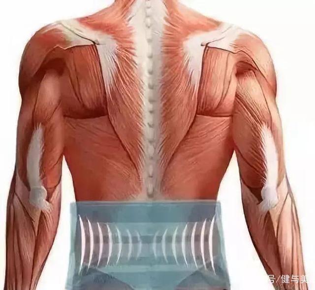 健身护腰作用是什么?不止是保护腰部…………