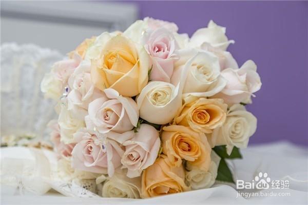 「送玫瑰花几朵各代表什么」送玫瑰花的含义
