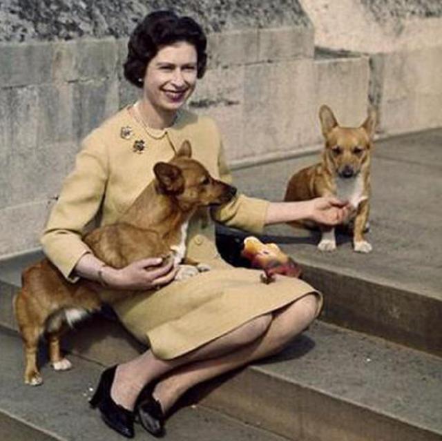 英国女王的5条裙子:图2端庄典雅,图5奢华无比,天下无双!