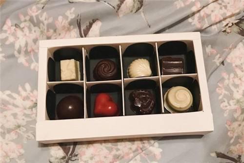 「宠物情人巧克力」情人巧克力