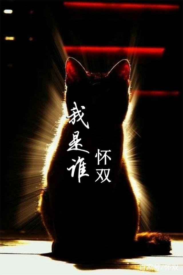「猫武士维基 - 灰机wiki」猫武士吧